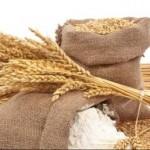 Pšenica kao lek