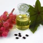 8 razloga da koristite ricinusovo ulje za kosu, kožu i kao lek