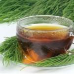 Čaj od rastavića (preslice) priprema i lekovito dejstvo – tinktura