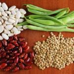 Estrogen u hrani – namirnice bogate estrogenom