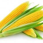 7 razloga da češće jedete kuvani kukuruz