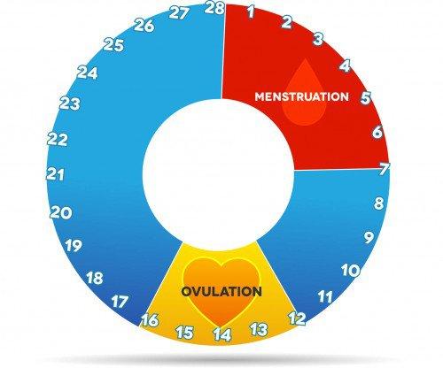 ovulacija simptomi