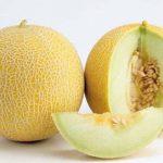 Dinja – sočna, ukusna i lekovita