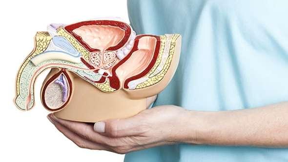 uvecana prostata lecenje simptomi