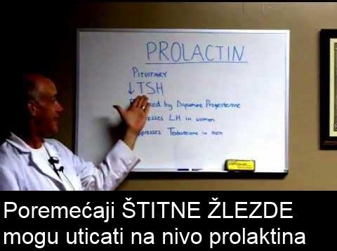 prolaktin i trudnoca